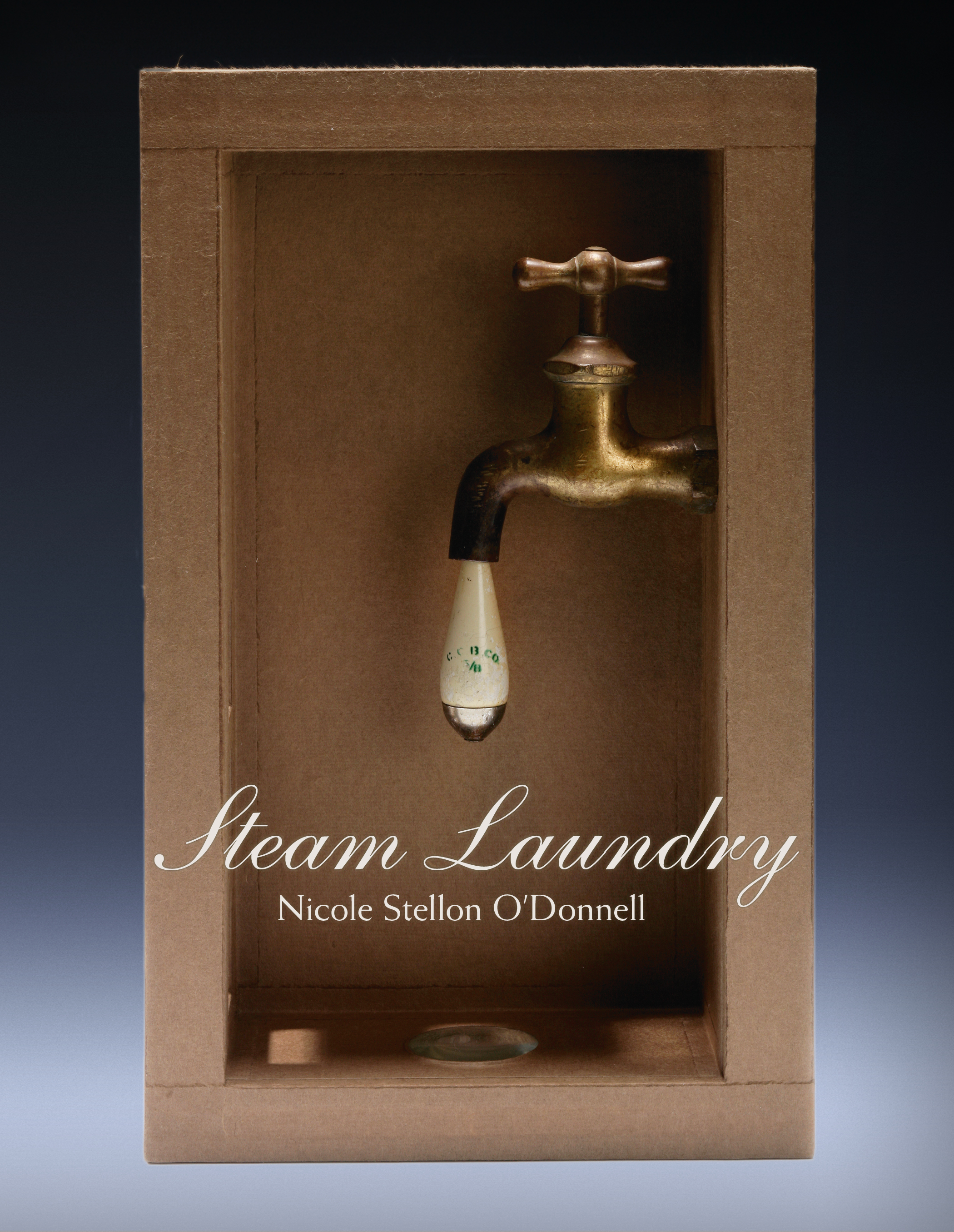 florence steam laundry by nicole - photo#1
